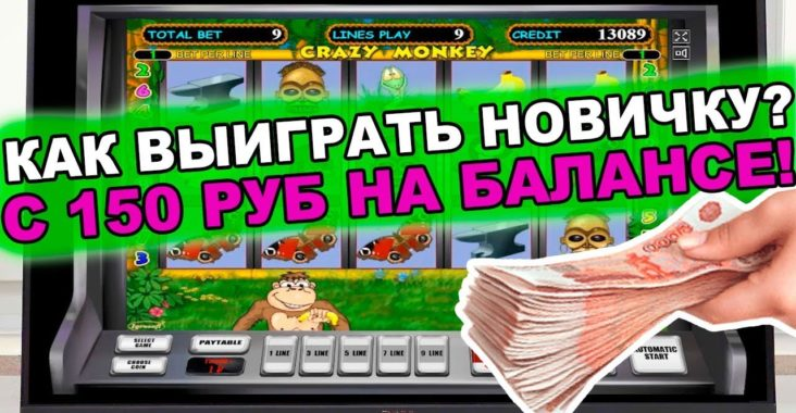 игровые автоматы обезьянки на деньги играть рейтинг слотов рф